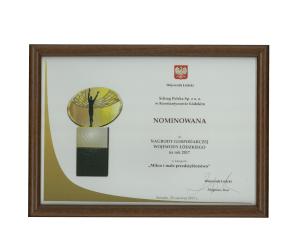 Nagroda wojewody łódzkiego Schrag Polska.
