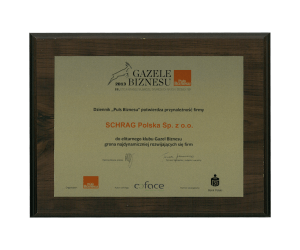 Gazela biznesu 2013 Schrag Polska.